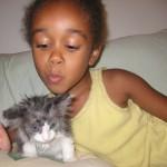 In Memory of Max the Cat