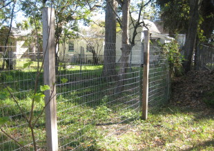 Building a Simple Fence at Our Homestead in the City