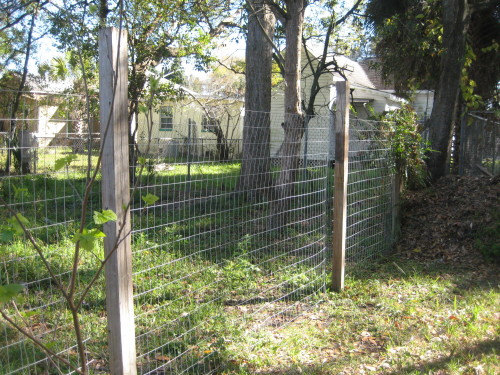 building a simple fence, homestead in the city