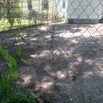 A Fence Patch: Temporary Prevention